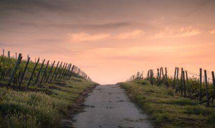 Oczekując cudu – otrzymać drogę