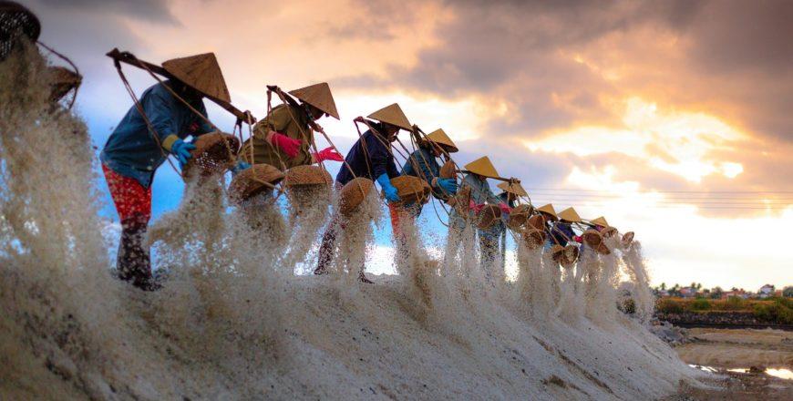 Niebezpieczeństwo zwietrzałej soli – o wyzwaniach dorosłej codzienności